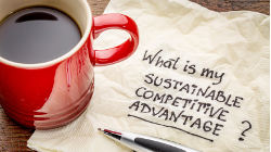 What is my sustainable competitive advantage